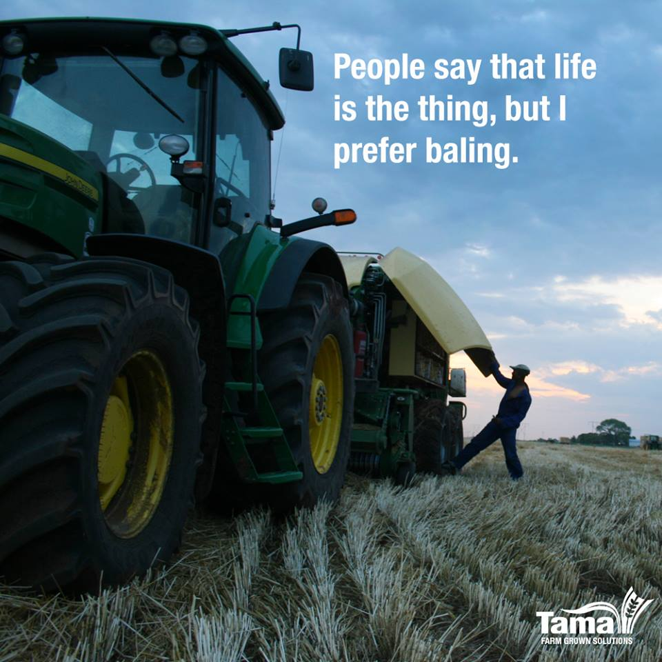 People say that life is the thing, but I prefer baling.