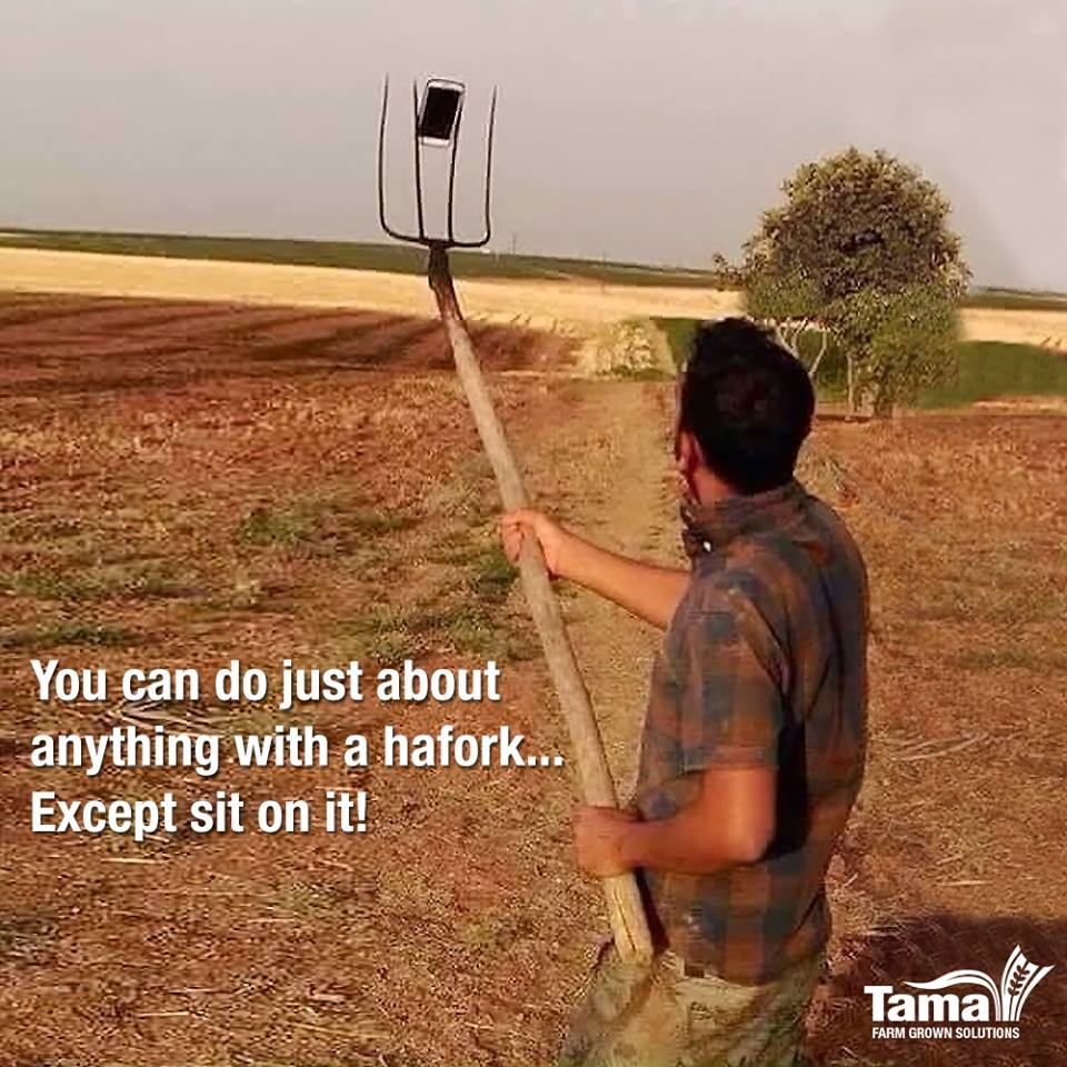 You can do just about anything with a hayfork... Except sit on it!